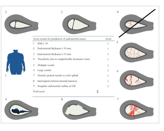 IETA оценка эндометрия и определение риска развития рака эндометрия по балльной системе (REC score), фото