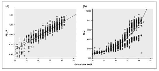Пренатальная оценка зрелости легких плода на 3-D УЗИ, фото
