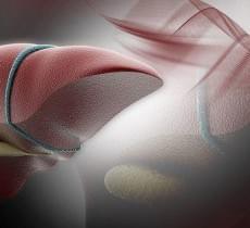 Керівництво та рекомендації EFSUMB по клінічному використання ультразвукової еластографії печінки. Частина 2: Захворювання печінки