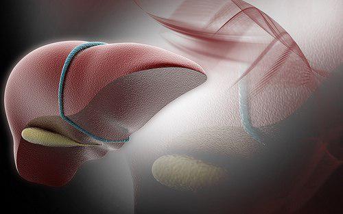 Руководство и рекомендации EFSUMB по клиническому использованию ультразвуковой эластографии печени. Часть вторая: Заболевания печени - Статьи RH